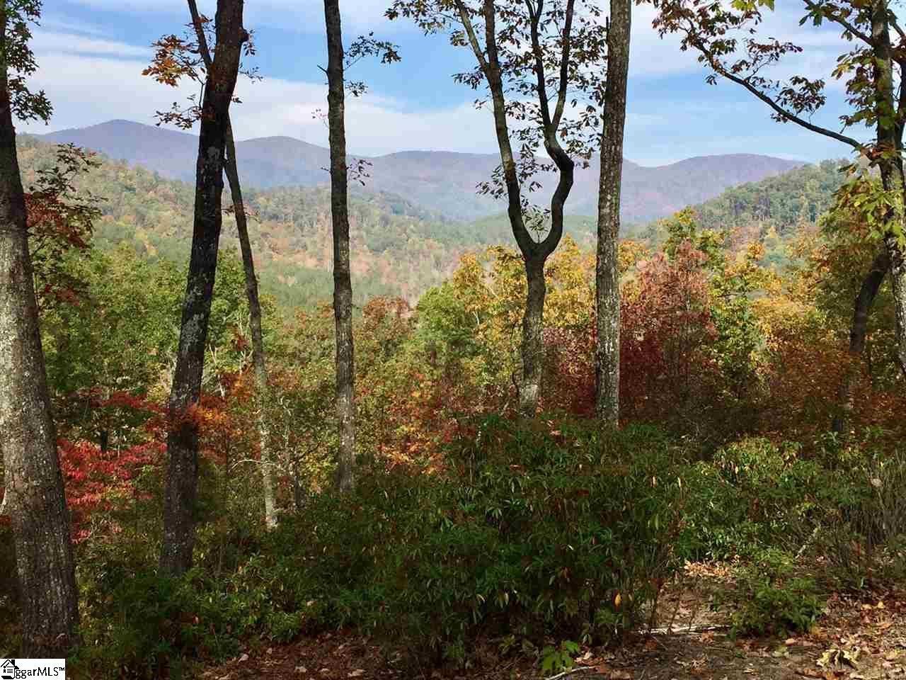 230 Wood Violet Trail, Marietta, SC 29661