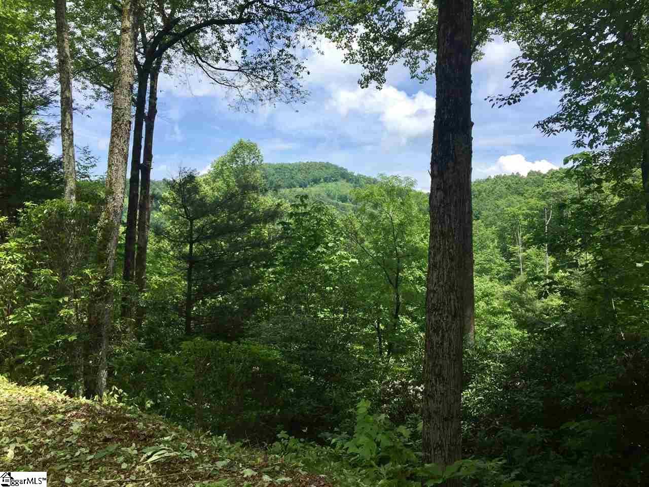 Spruce, Zirconia, NC 28790