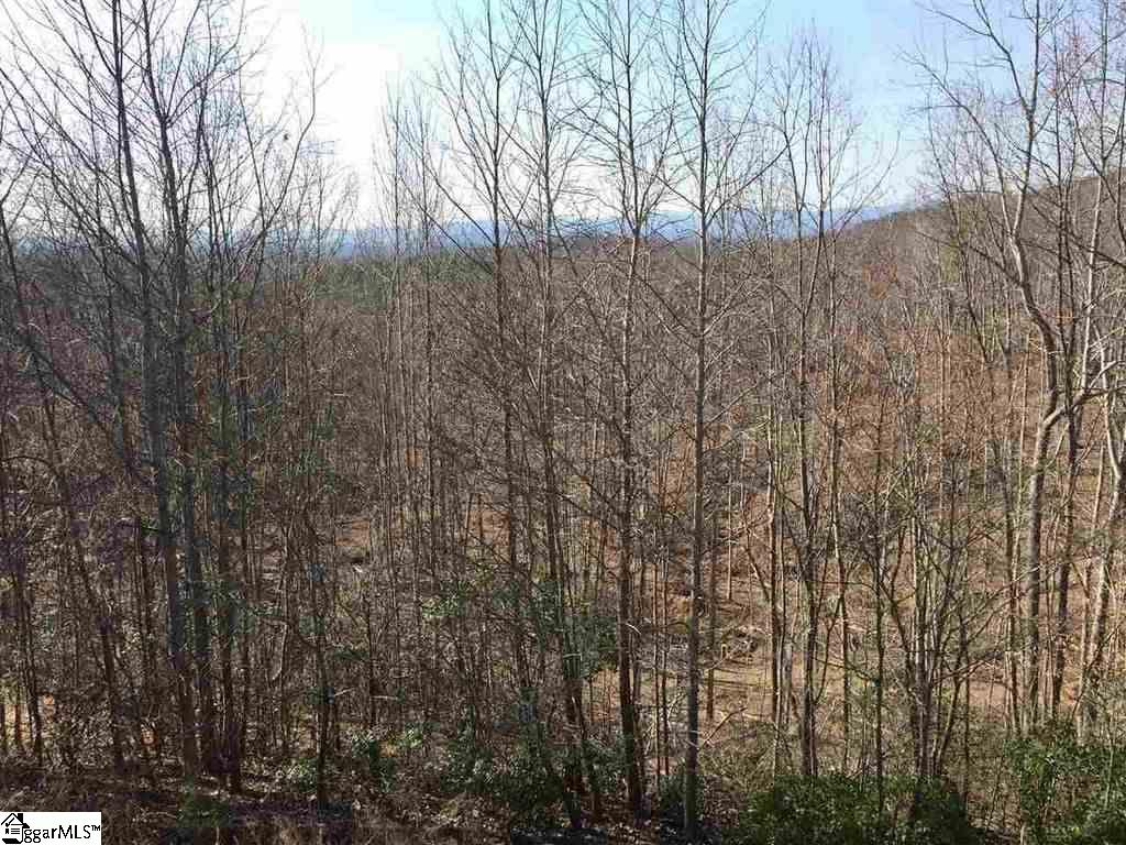 371 Woodall Mountain Road, Pickens, SC 29671