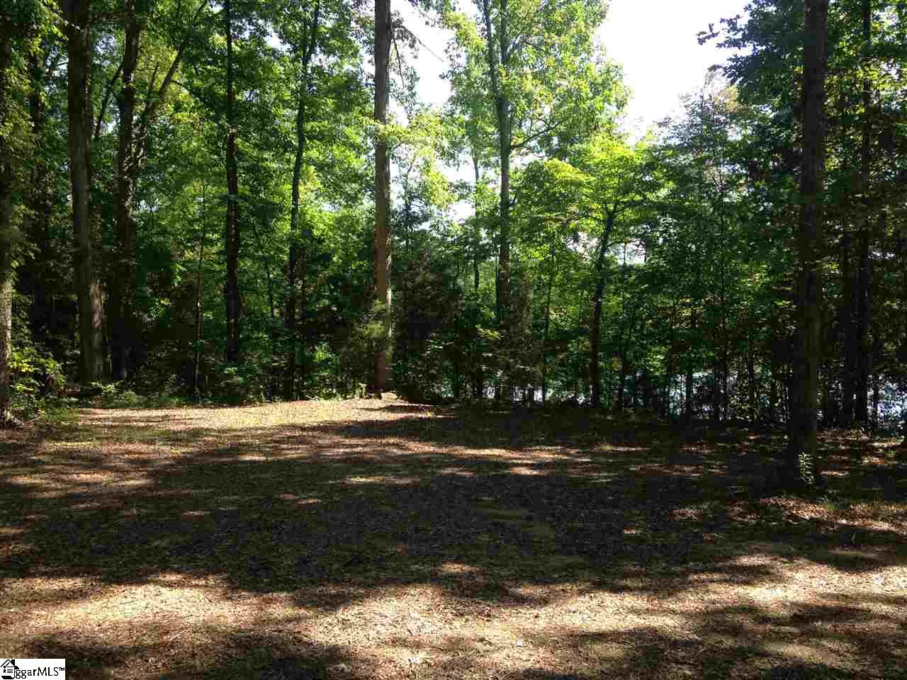 00 Riddle Town, Gray Court, SC 29645