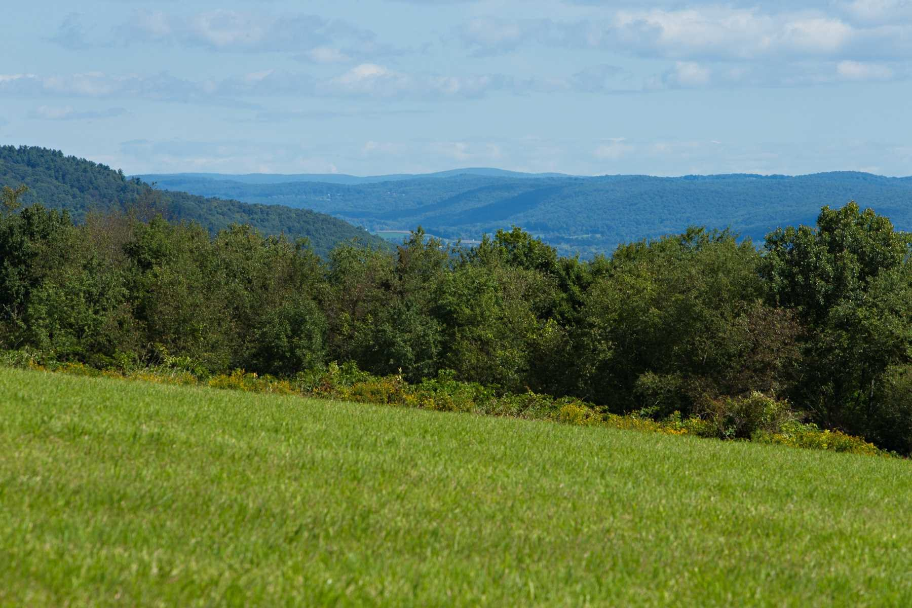Additional photo for property listing at 371 HALLS CORNERS Road 371 HALLS CORNERS Road Dover Plains, New York 12522 United States