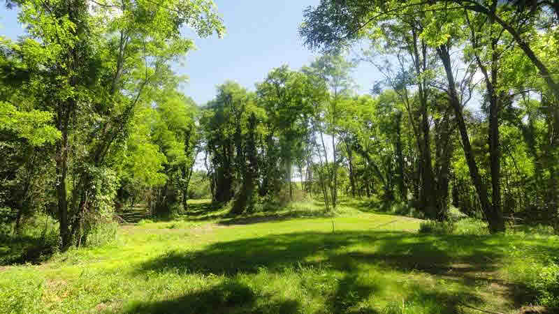 Additional photo for property listing at RT 27 RT 27 Claverack, New York 12513 United States
