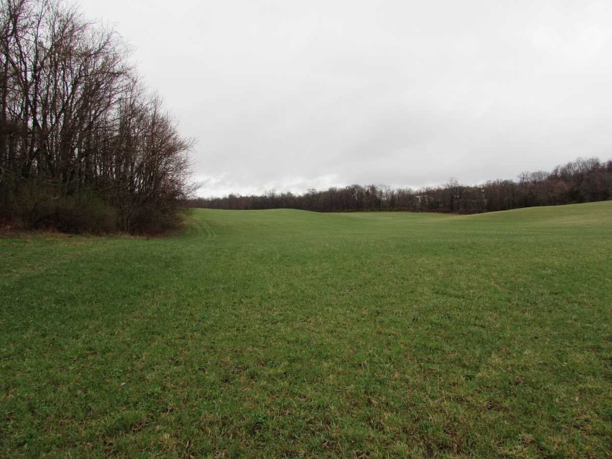 Land for Sale at TURKEY HILL Road TURKEY HILL Road Red Hook, New York 12571 United States