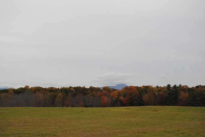 Land for Sale at JUG Road JUG Road Clermont, New York 12526 United States