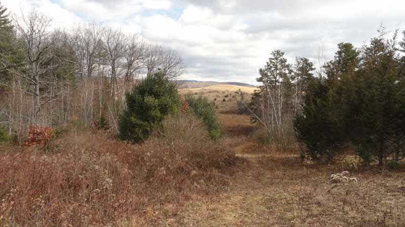 Additional photo for property listing at RT 82 RT 82 Ancram, New York 12503 United States