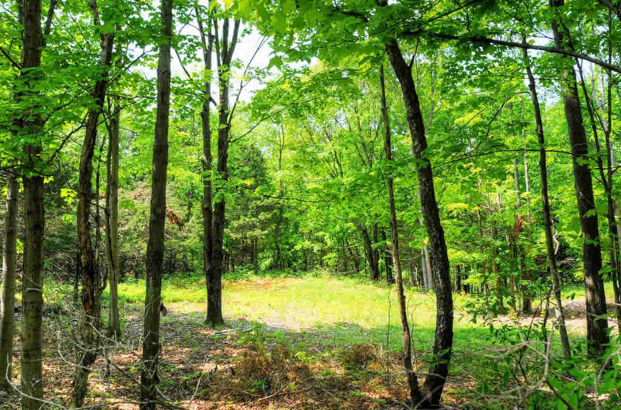Land for Sale at COLD SPRING COLD SPRING Milan, New York 12514 United States