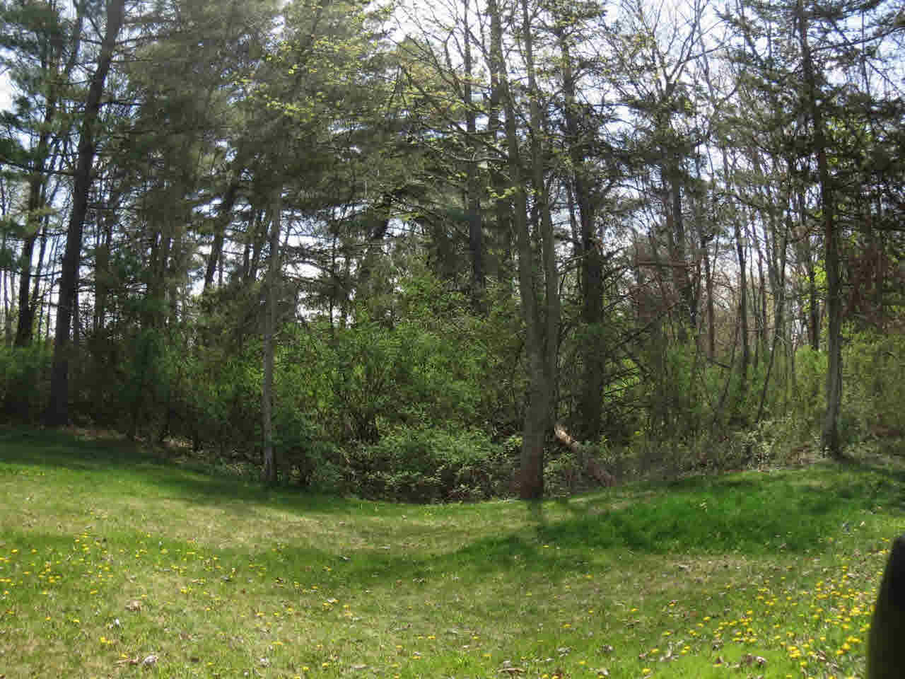 Land for Sale at LOYOLA ROAD LOYOLA ROAD Livingston, New York 12523 United States