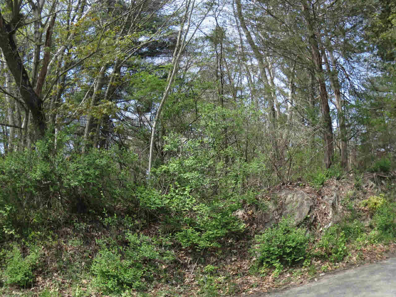 Additional photo for property listing at HONOR ROAD HONOR ROAD Elizaville, New York 12523 United States