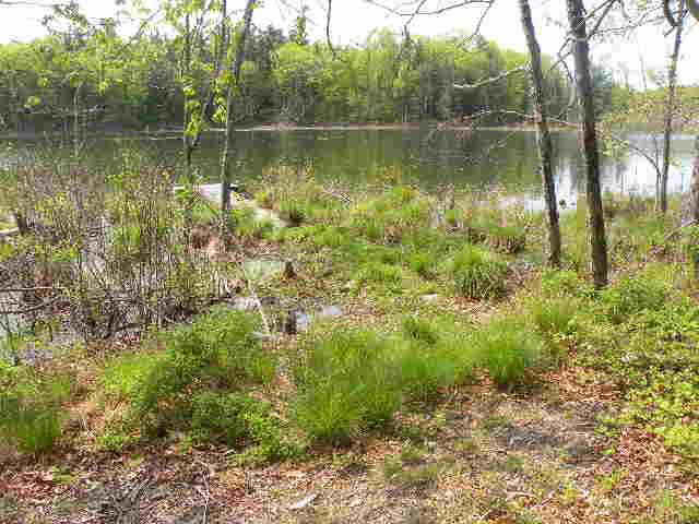 Land for Sale at 315 POND ROAD 315 POND ROAD Rhinebeck, New York 12572 United States