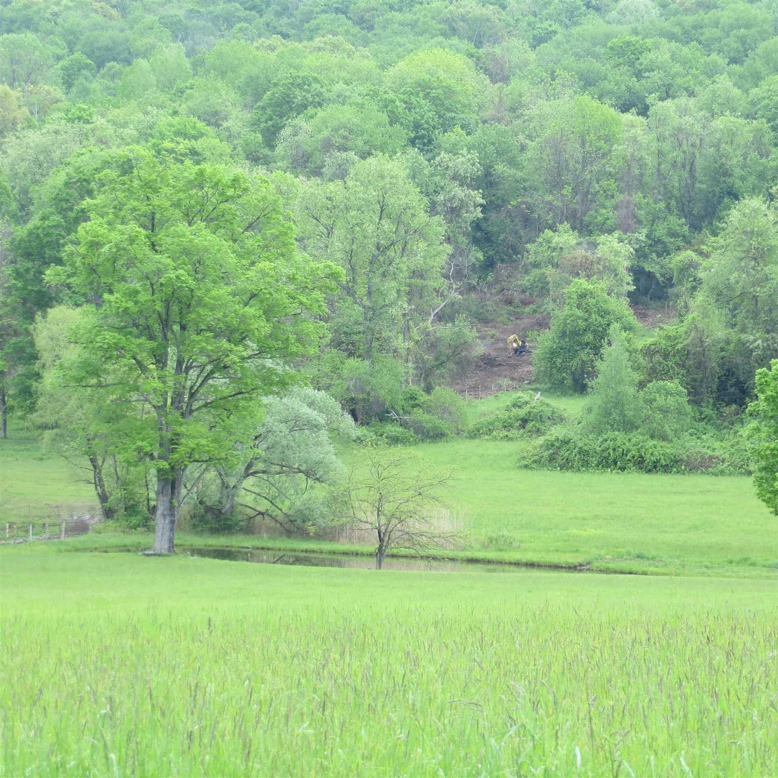 Additional photo for property listing at 83 POPLAR HILL ROAD 83 POPLAR HILL ROAD Amenia, New York 12592 United States