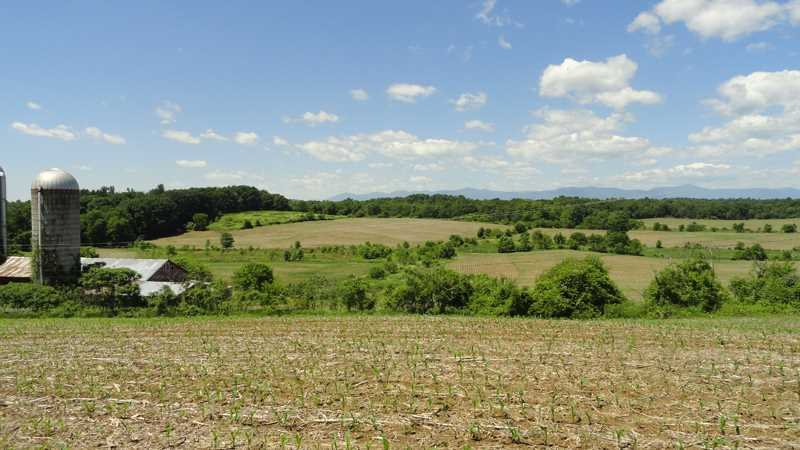 Land for Sale at 419 TISHAUSER Road 419 TISHAUSER Road Claverack, New York 12513 United States