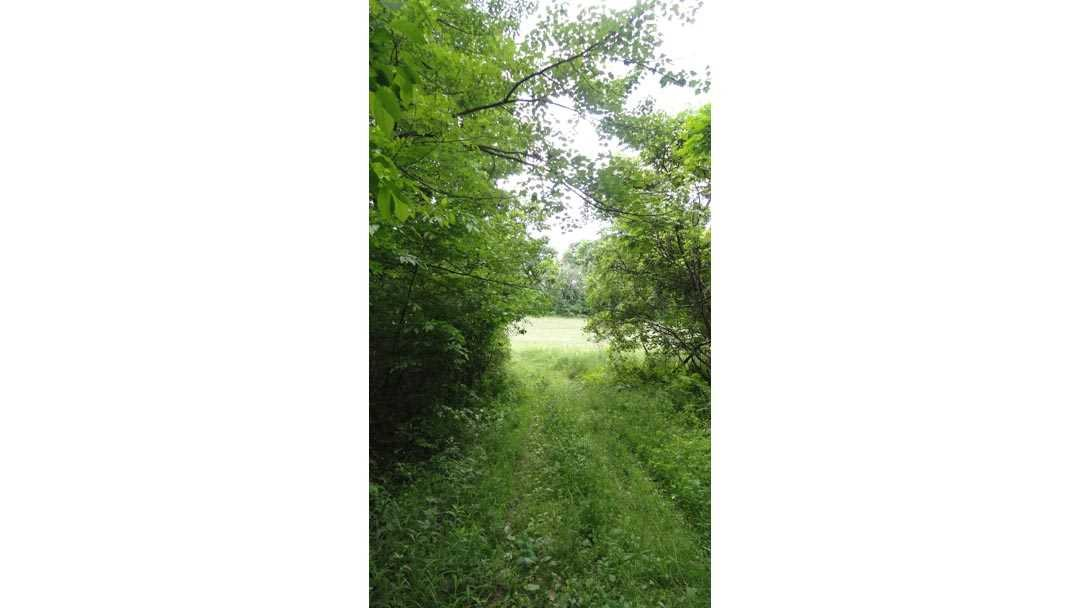 Additional photo for property listing at 419 TISHAUSER Road 419 TISHAUSER Road Claverack, New York 12513 United States