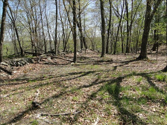 Land for Sale at JAMESON HILL ROAD JAMESON HILL ROAD Stanfordville, New York 12581 United States