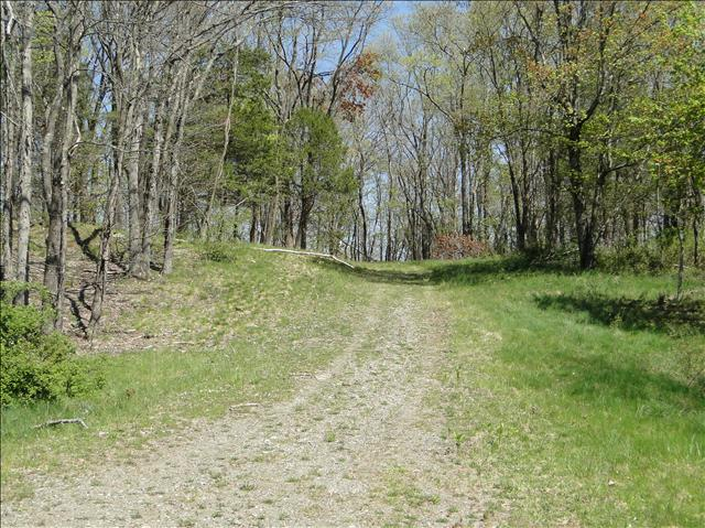Additional photo for property listing at JAMESON HILL ROAD JAMESON HILL ROAD Stanfordville, New York 12581 United States