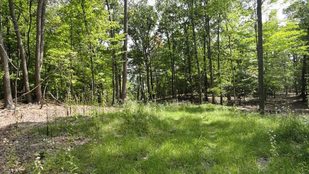 Additional photo for property listing at RT 82 RT 82 Ancramdale, New York 12503 United States