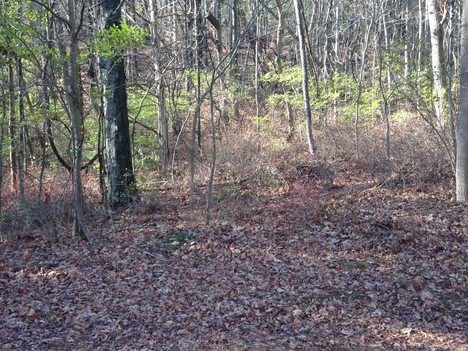 Land for Sale at LOT #30 TROUTBECK CR Road LOT #30 TROUTBECK CR Road Amenia, New York 12501 United States