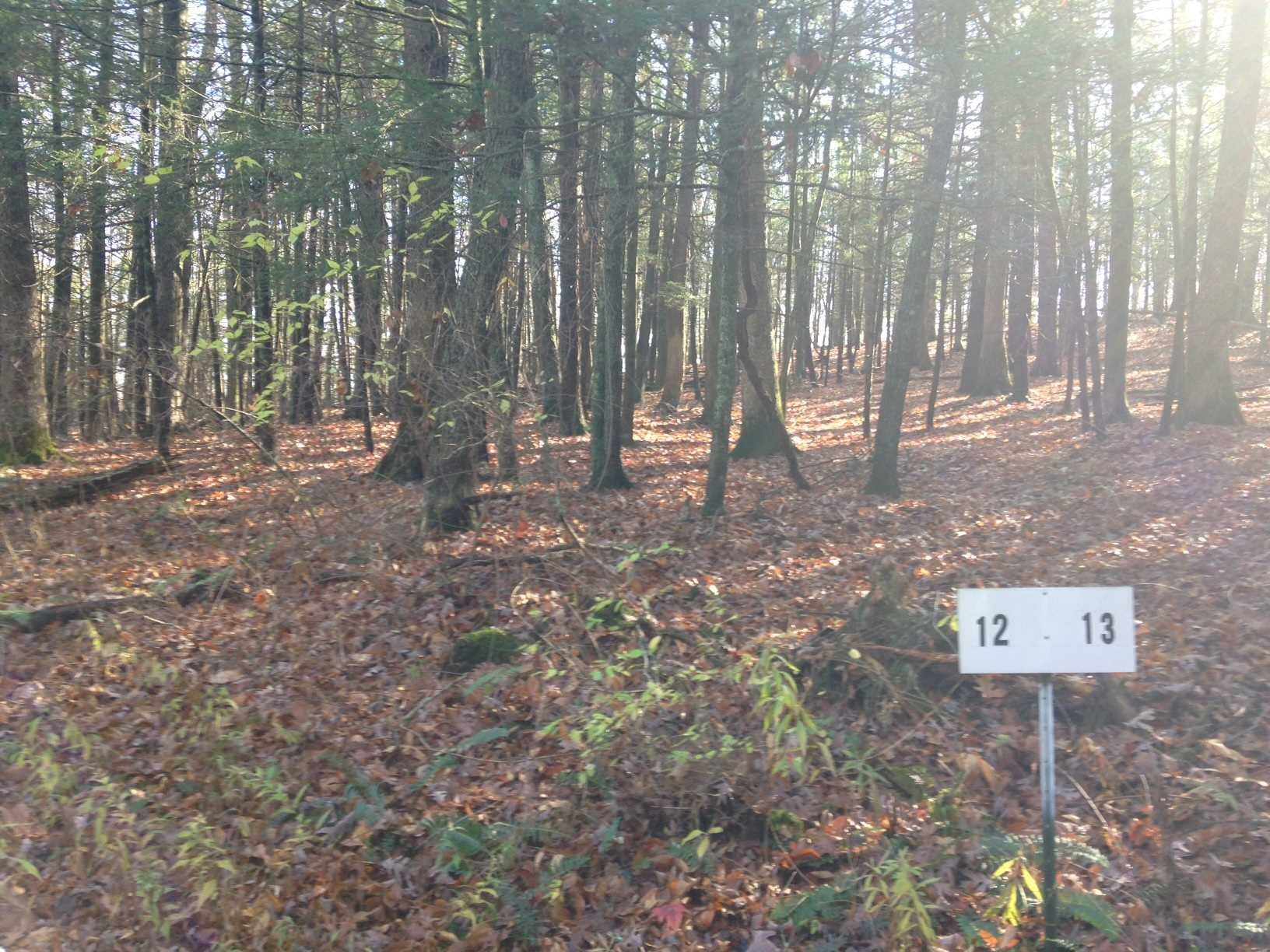 Land for Sale at LOT #12 TROUTBECK CR Road LOT #12 TROUTBECK CR Road Amenia, New York 12501 United States