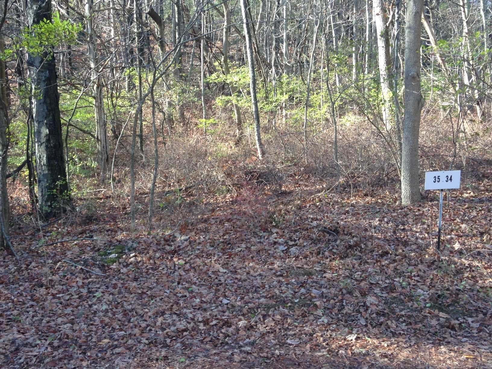 Land for Sale at LOT #35 WOODLAND Road LOT #35 WOODLAND Road Amenia, New York 12501 United States