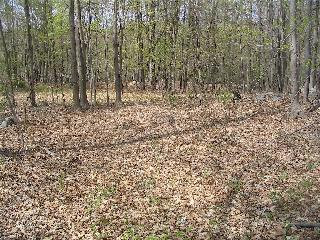 Land for Sale at 191 JANSEN Road 191 JANSEN Road Pawling, New York 12531 United States