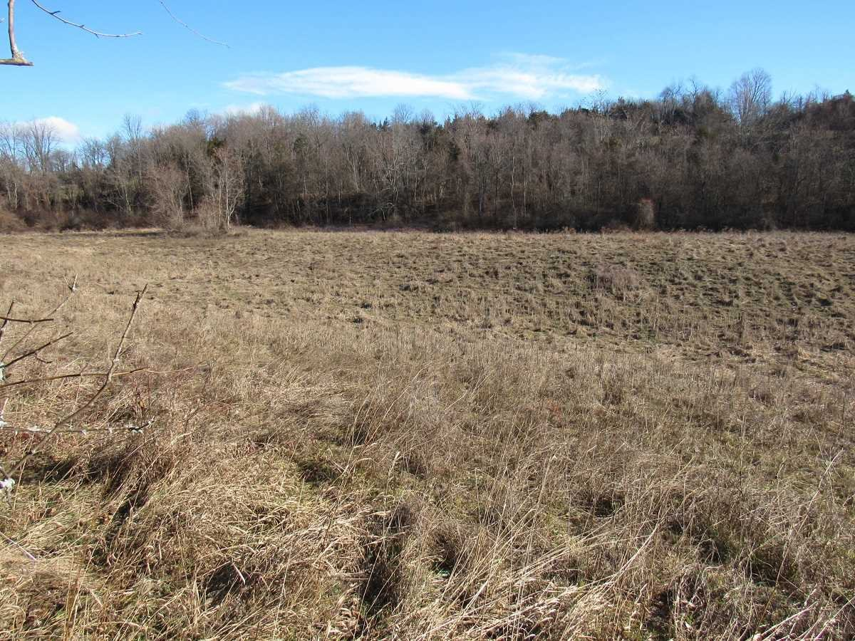 Land for Sale at 25 ODAK FARM LOT4 Road 25 ODAK FARM LOT4 Road Milan, New York 12571 United States