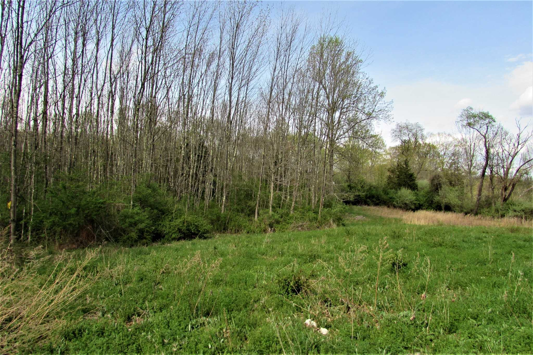 Land for Sale at 12 CUSHMAN Road 12 CUSHMAN Road Pawling, New York 12564 United States