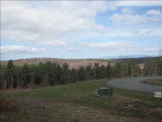 LOT 8 UPPER MEADOWS, Clinton, NY 12538