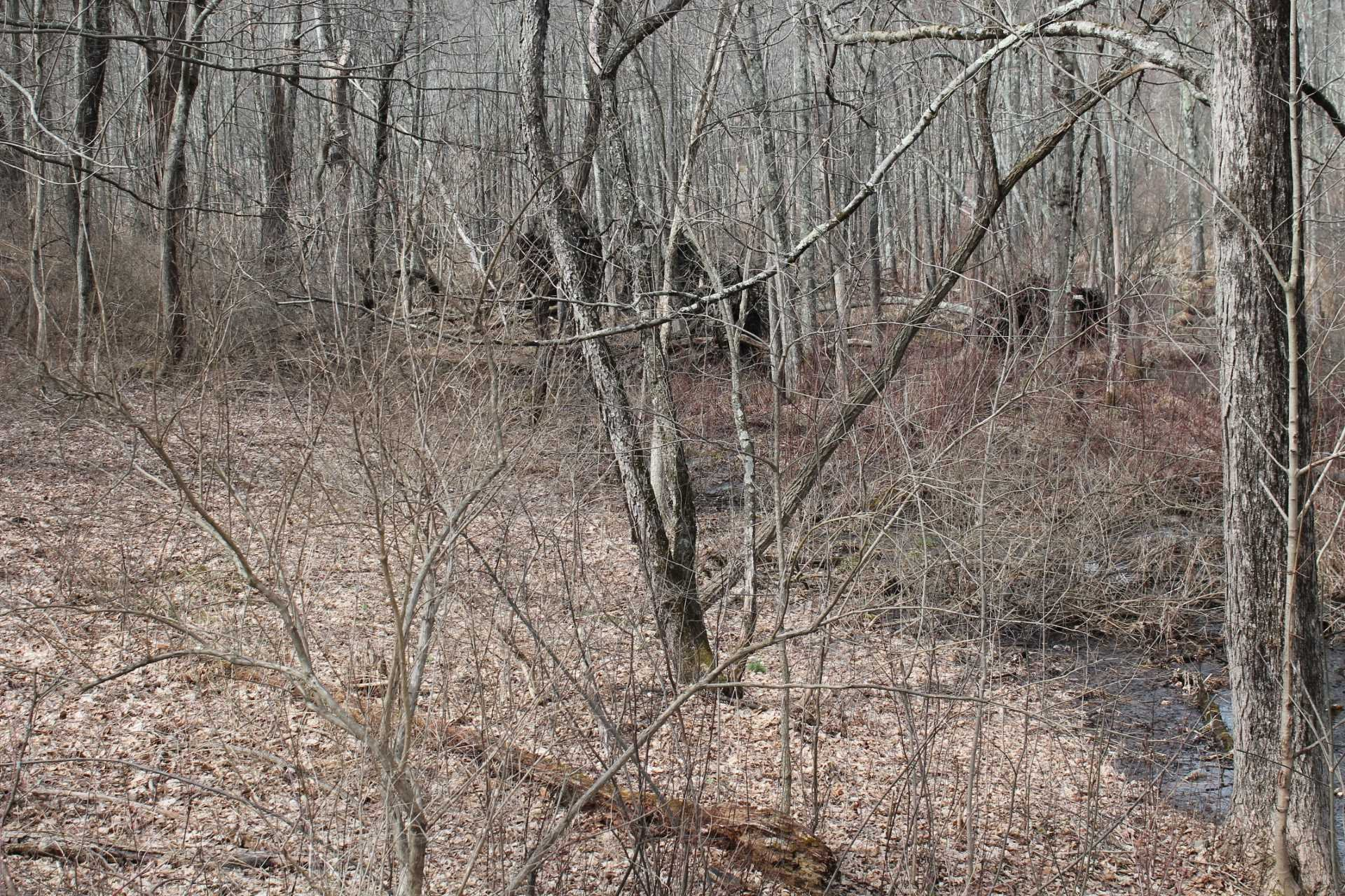 Land for Sale at CLINTON Avenue CLINTON Avenue Pleasant Valley, New York 12578 United States