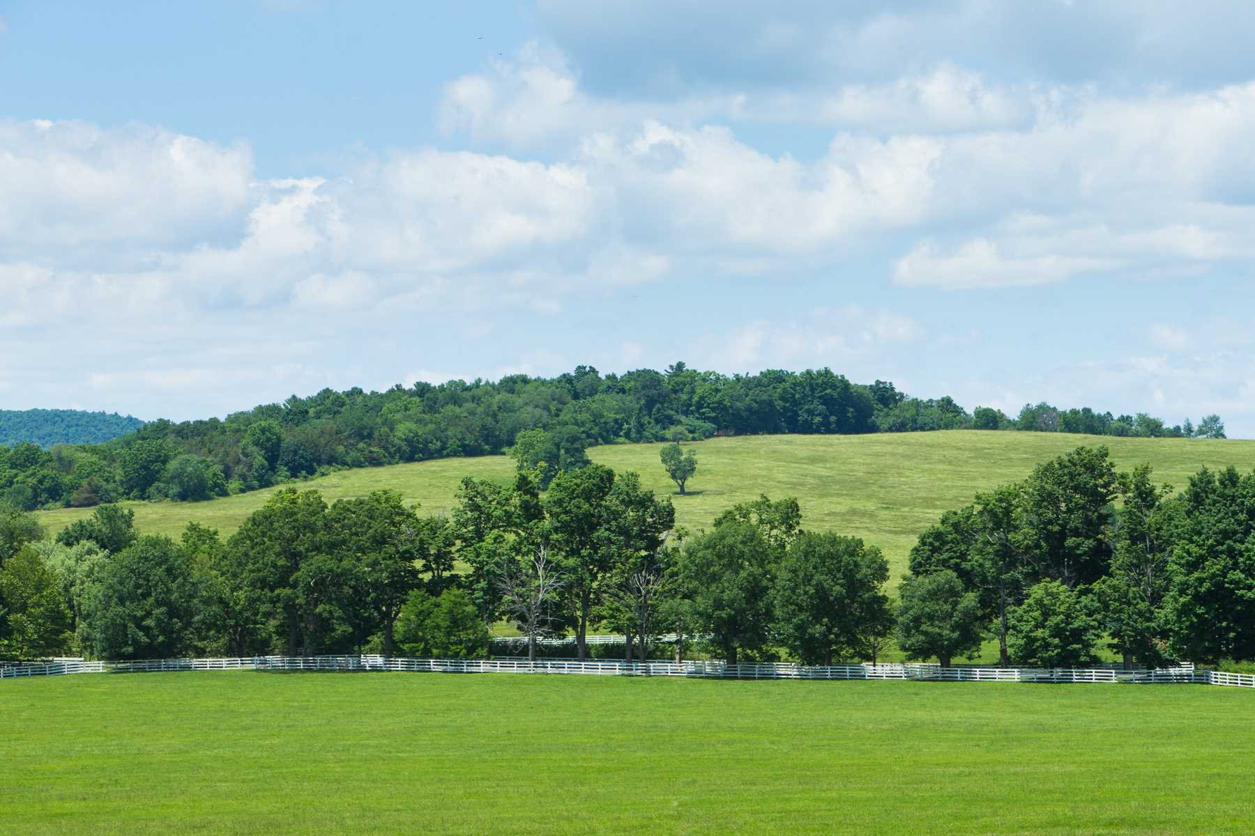 Land for Sale at 166 STREVER FARM ROAD 166 STREVER FARM ROAD Pine Plains, New York 12567 United States
