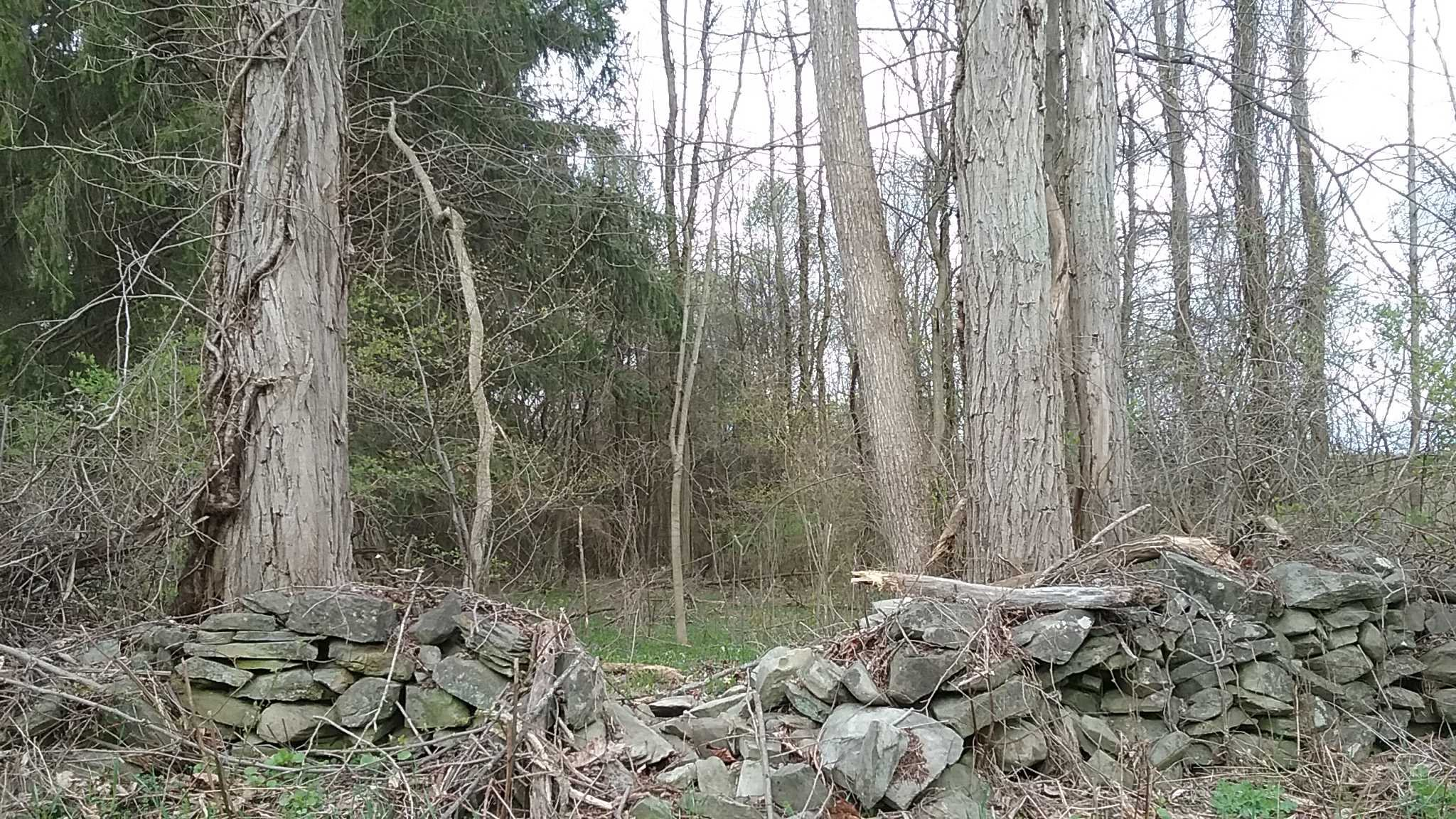 Land for Sale at MARSHALL Road MARSHALL Road Pleasant Valley, New York 12538 United States