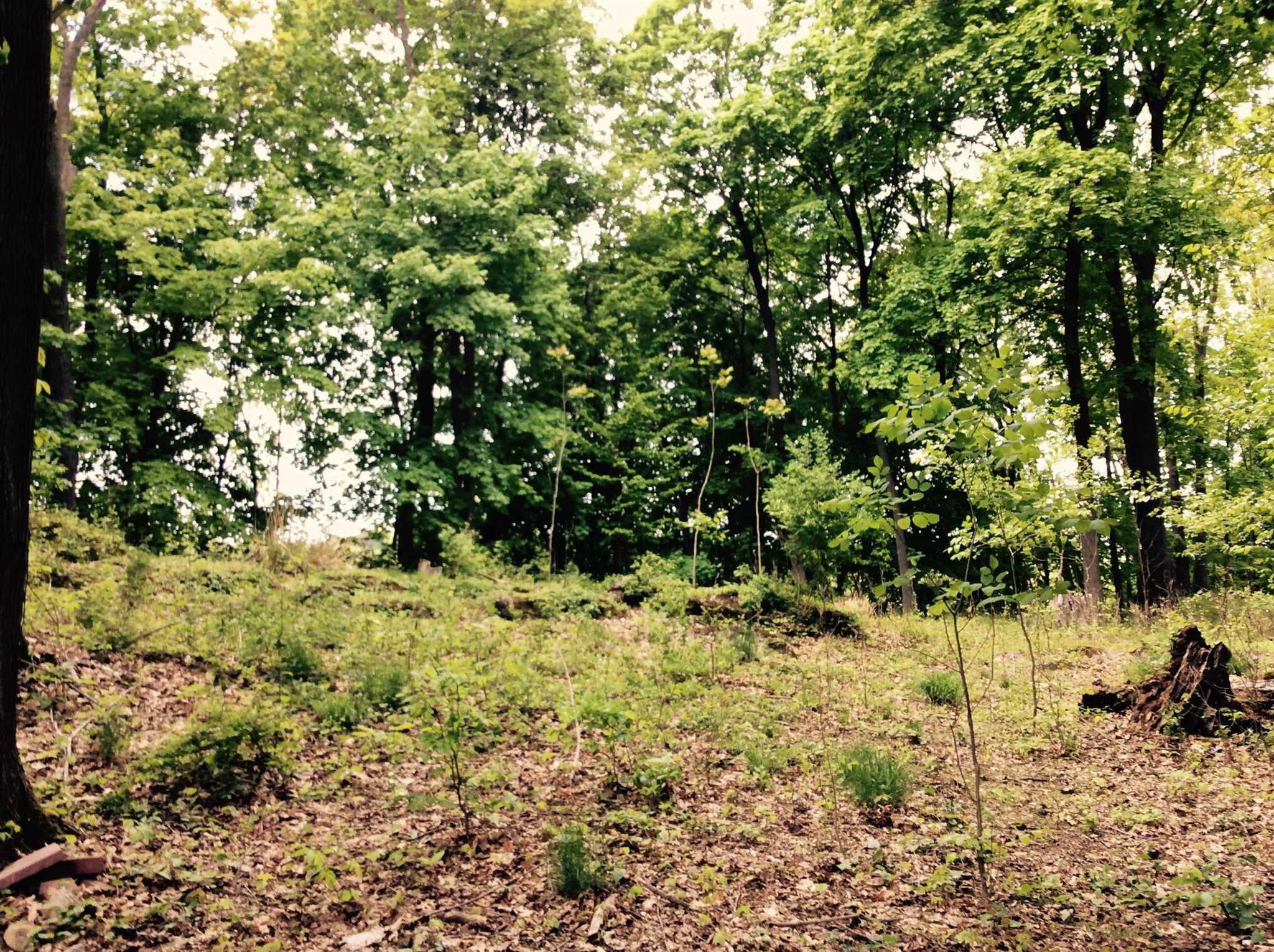 Land for Sale at 15 RYANS Avenue 15 RYANS Avenue Beacon, New York 12508 United States