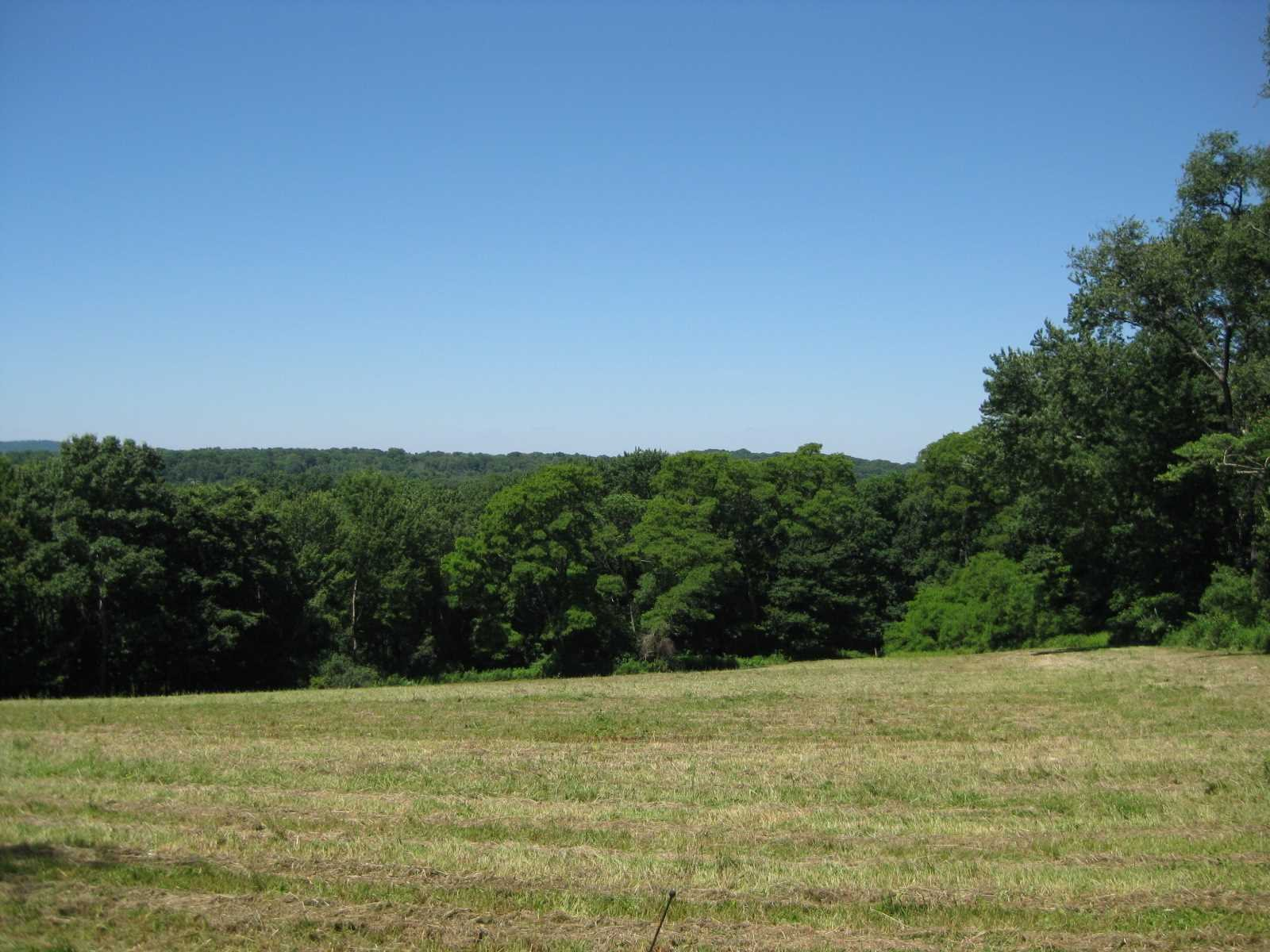 Land for Sale at 560 CHESTNUT RIDGE ROAD 560 CHESTNUT RIDGE ROAD Dover Plains, New York 12522 United States