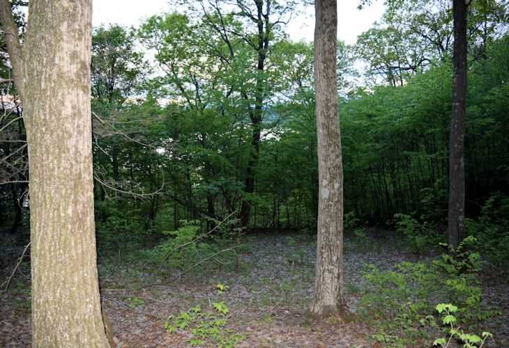 Additional photo for property listing at MORTON Road MORTON Road Rhinebeck, New York 12572 United States