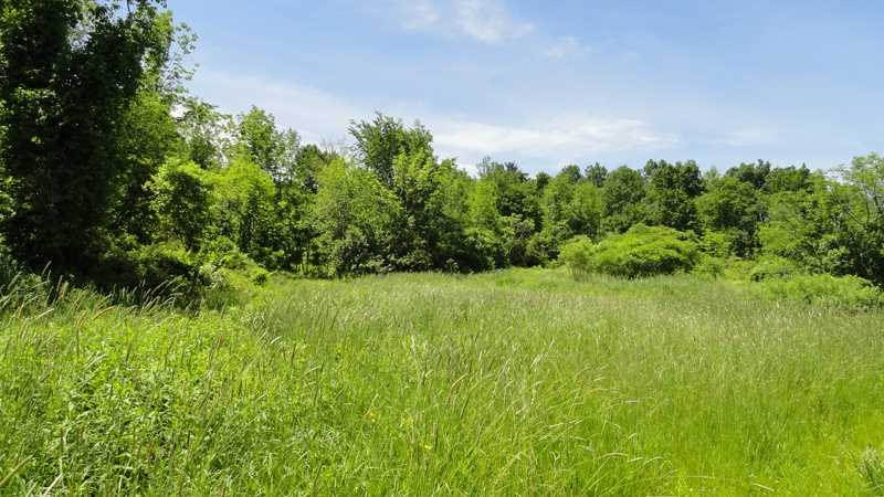 Land for Sale at 911 PALMER ROAD EXT. 911 PALMER ROAD EXT. Claverack, New York 12521 United States