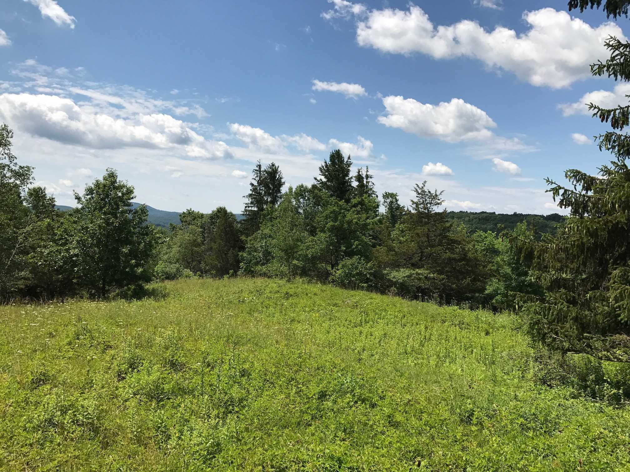 Additional photo for property listing at COUNTY ROUTE 7 COUNTY ROUTE 7 Gallatin, New York 12567 United States