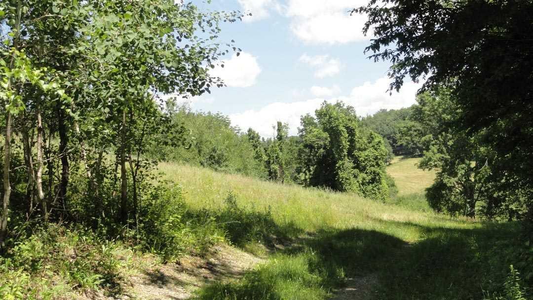 Additional photo for property listing at 338 PUNSIT Road 338 PUNSIT Road Austerlitz, New York 12037 United States
