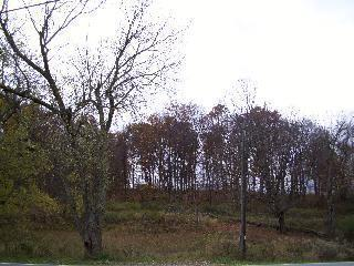 Land for Sale at FREEDOM ROAD LOT 37 FREEDOM ROAD LOT 37 La Grange, New York 12569 United States