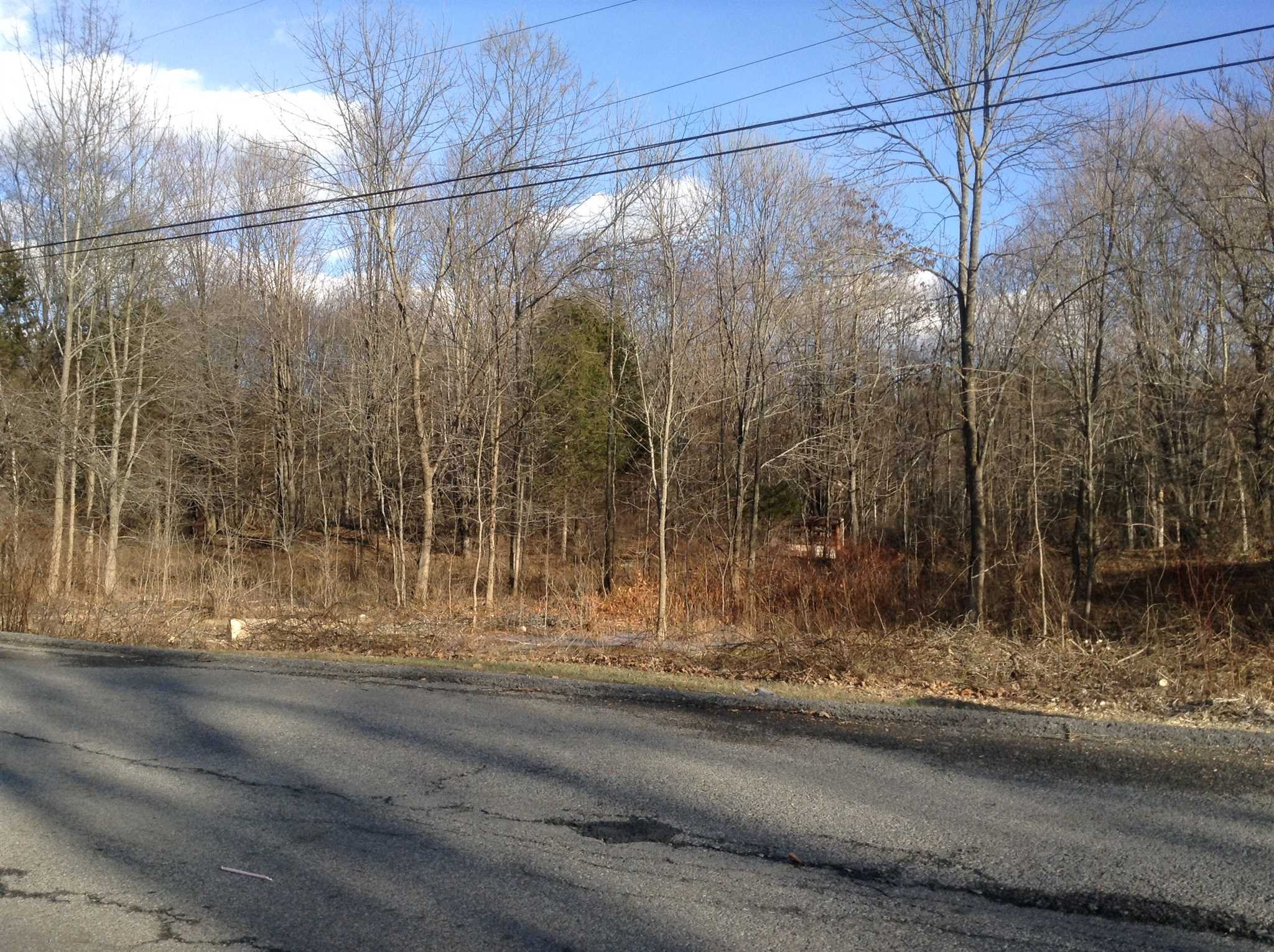 Land for Sale at 58 FOREST Drive 58 FOREST Drive Hyde Park, New York 12538 United States