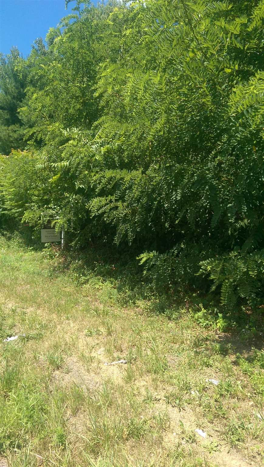 Land for Sale at CRUM ELBOW LOT #2 Road CRUM ELBOW LOT #2 Road Hyde Park, New York 12538 United States