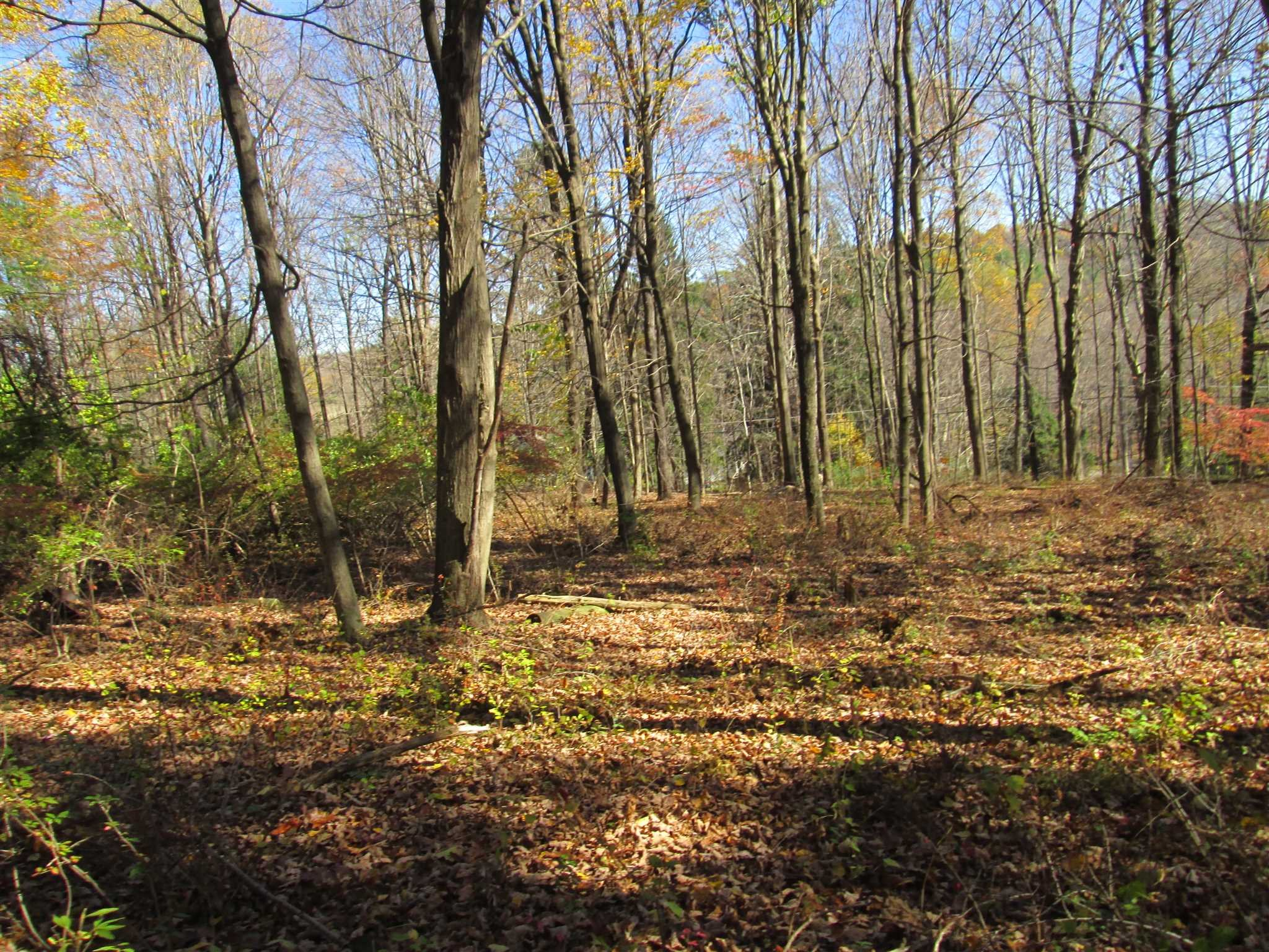 Land for Sale at 120 HARMONY Road 120 HARMONY Road Pawling, New York 12564 United States