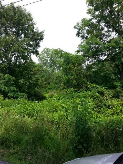 Additional photo for property listing at OLD WURTEMBURG OLD WURTEMBURG Rhinebeck, New York 12572 United States