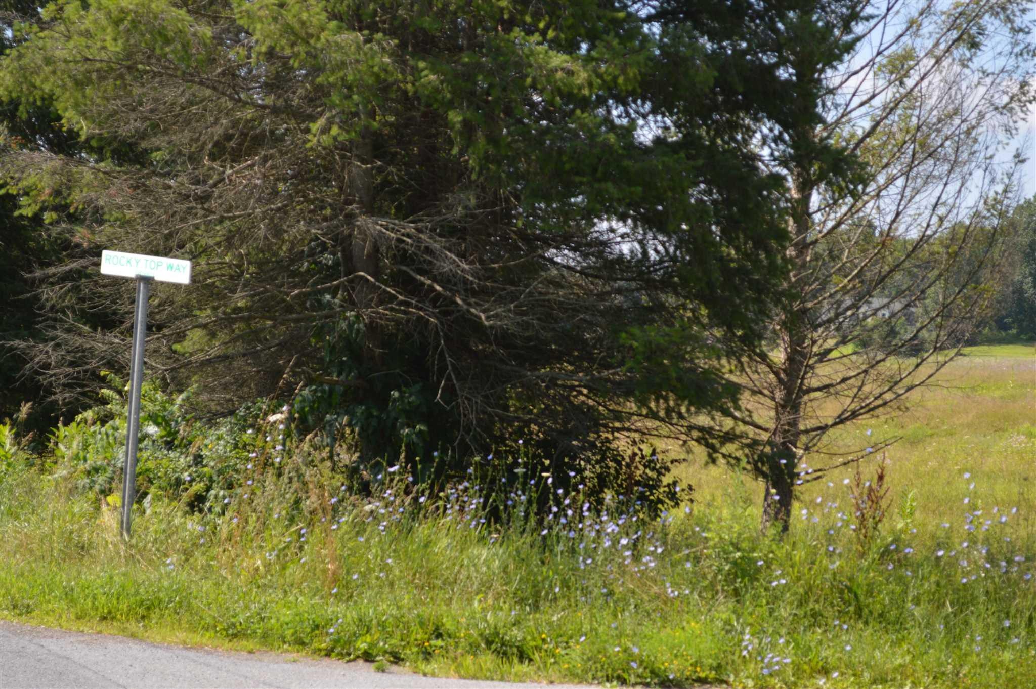 Land for Sale at SALT POINT TPKE SALT POINT TPKE Stanfordville, New York 12514 United States