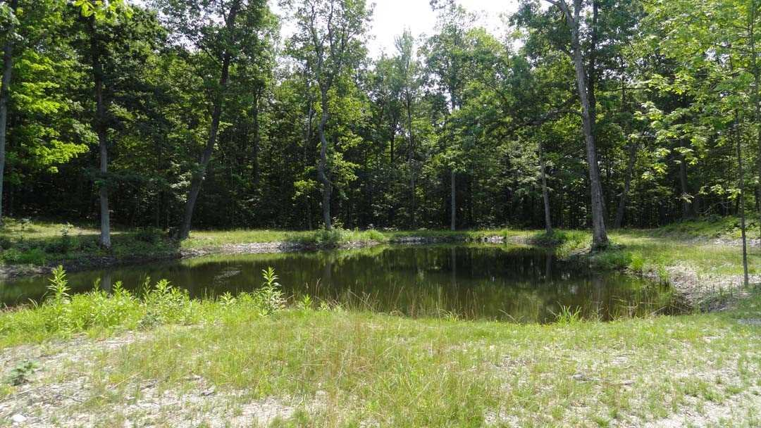 Additional photo for property listing at 108 DECKER Road 108 DECKER Road Gallatin, New York 12502 United States
