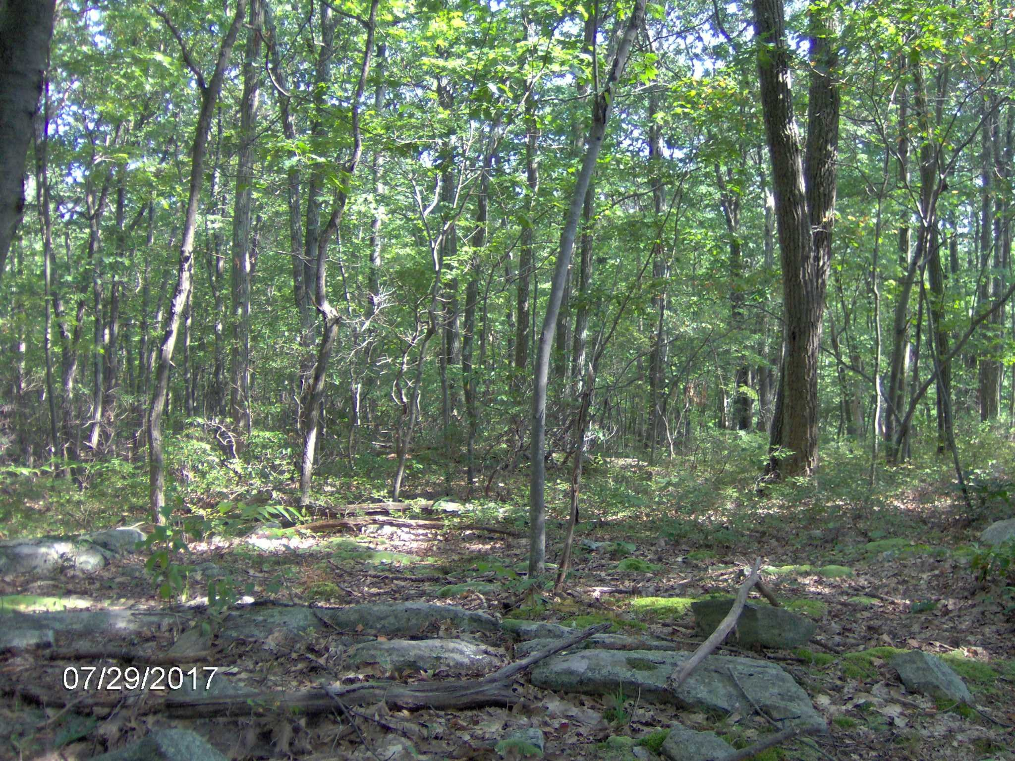 Land for Sale at 294 WOODMONT ROAD 294 WOODMONT ROAD East Fishkill, New York 12533 United States