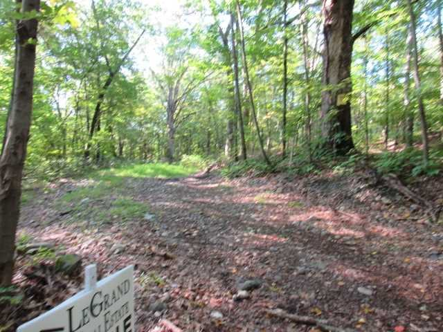 Land for Sale at 42 WILLOW CROSS ROAD 42 WILLOW CROSS ROAD Hyde Park, New York 12583 United States