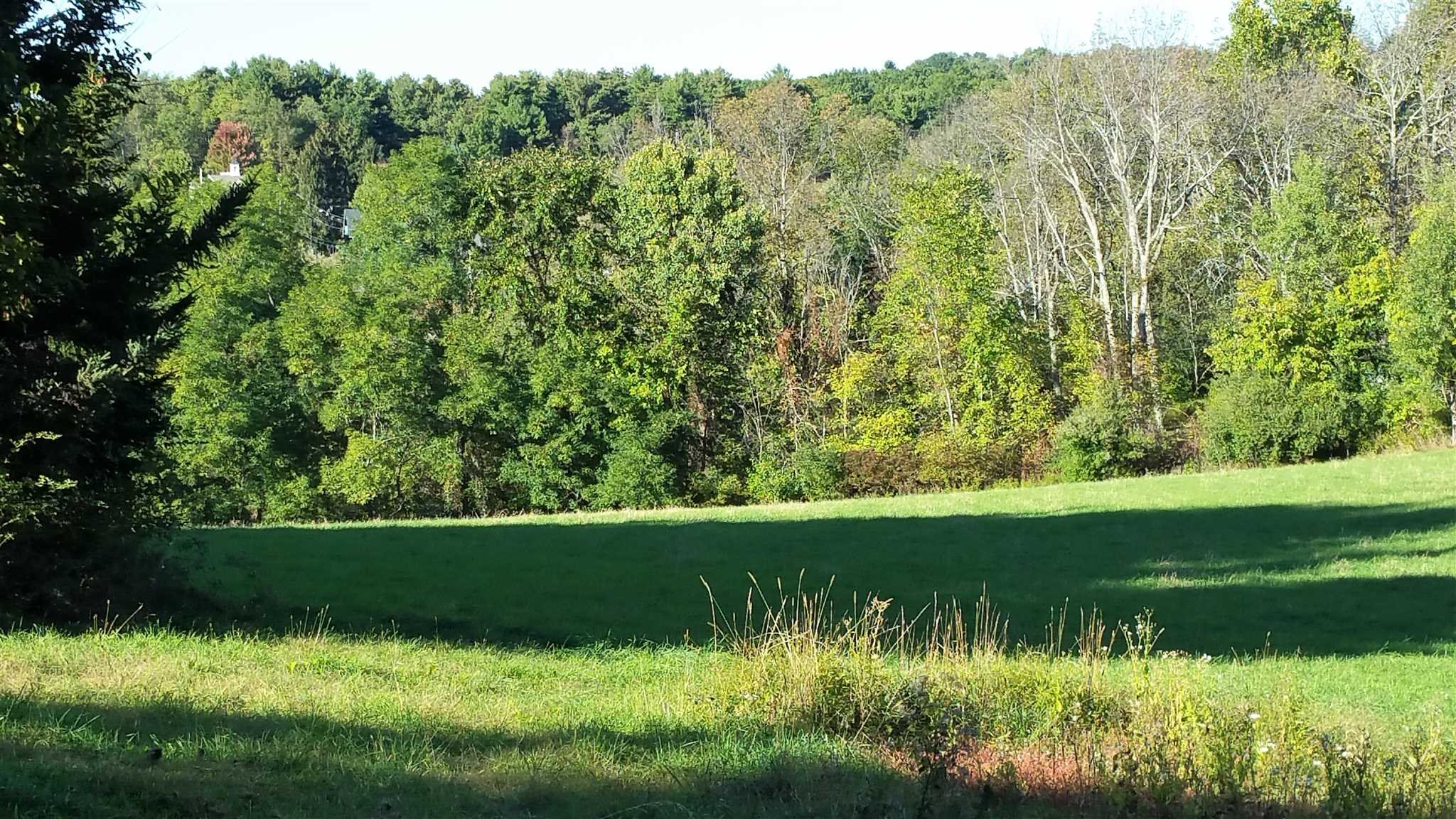 Additional photo for property listing at GREEN ACRES & S. GO GREEN ACRES & S. GO Elizaville, New York 12523 United States
