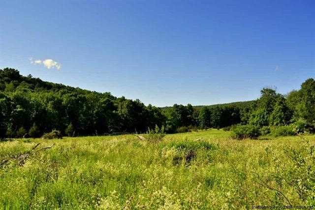 Land for Sale at OLD RUNWAY RD LOT 5 OLD RUNWAY RD LOT 5 Marbletown, New York 12484 United States