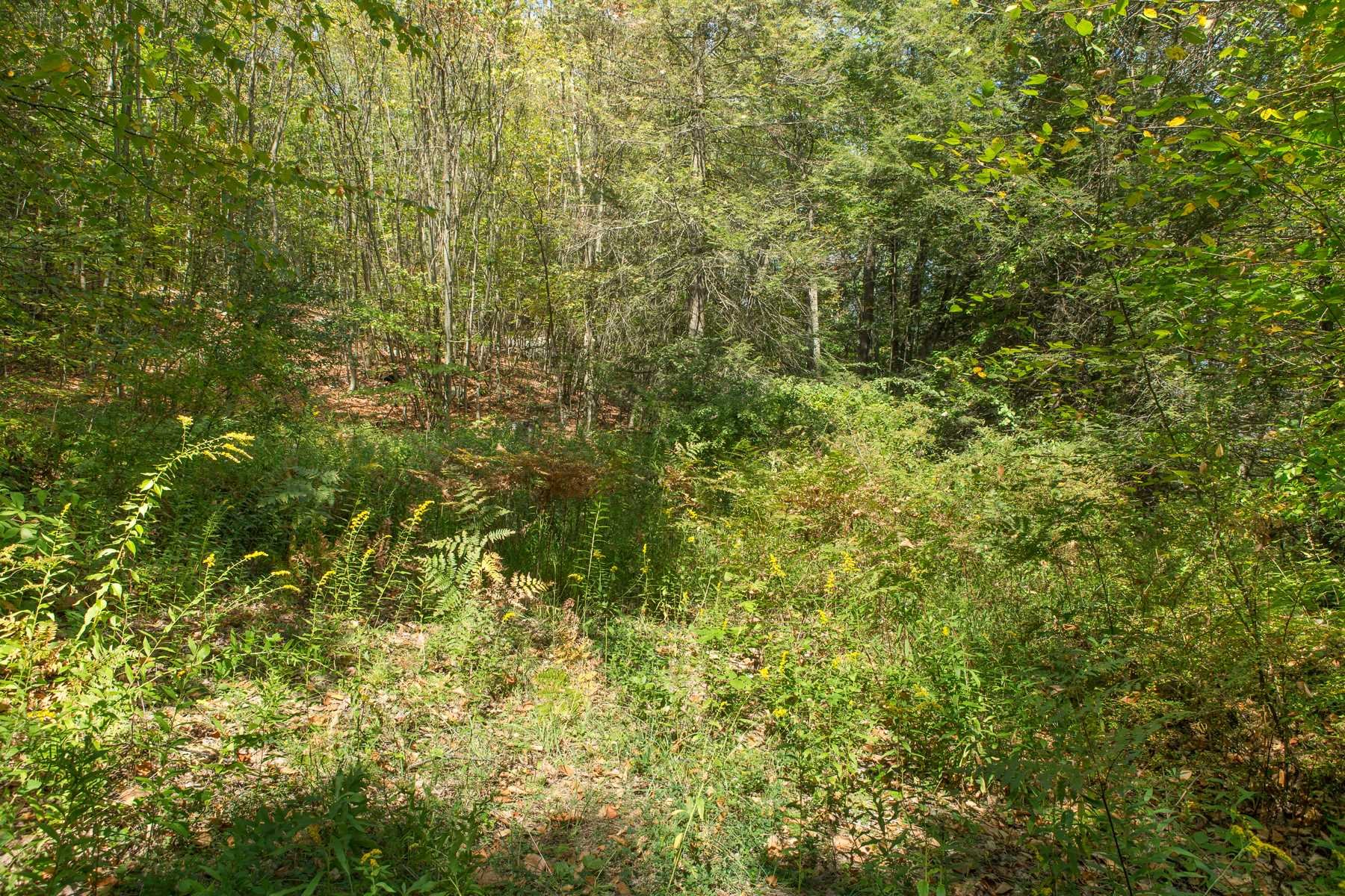 Land for Sale at 110 CART Road 110 CART Road Dover Plains, New York 12522 United States