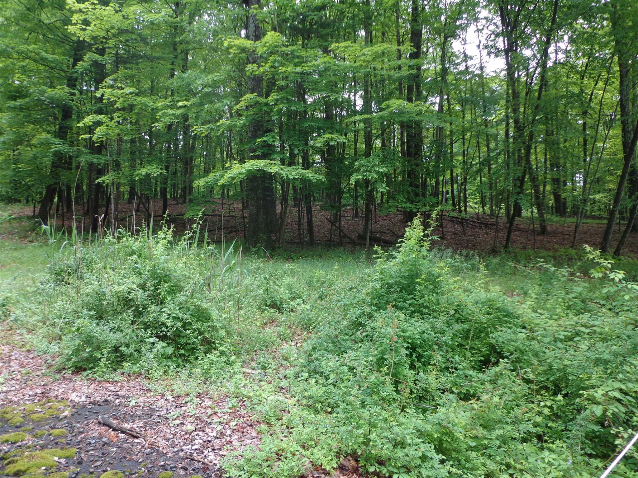 Land for Sale at ACKERT HOOK Road ACKERT HOOK Road Rhinebeck, New York 12571 United States