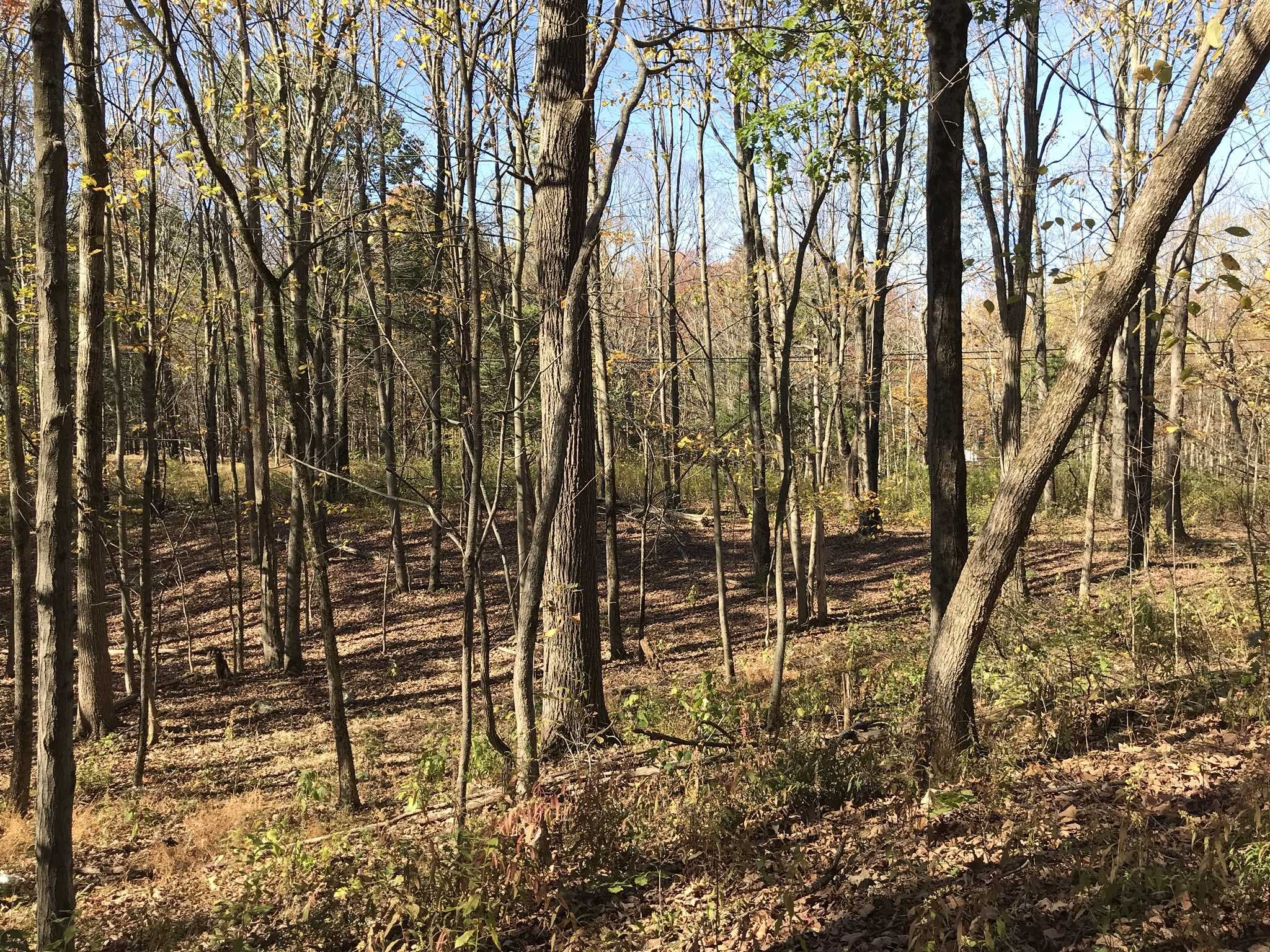 Land for Sale at 573 WILLOW BROOK Road 573 WILLOW BROOK Road Stanfordville, New York 12514 United States