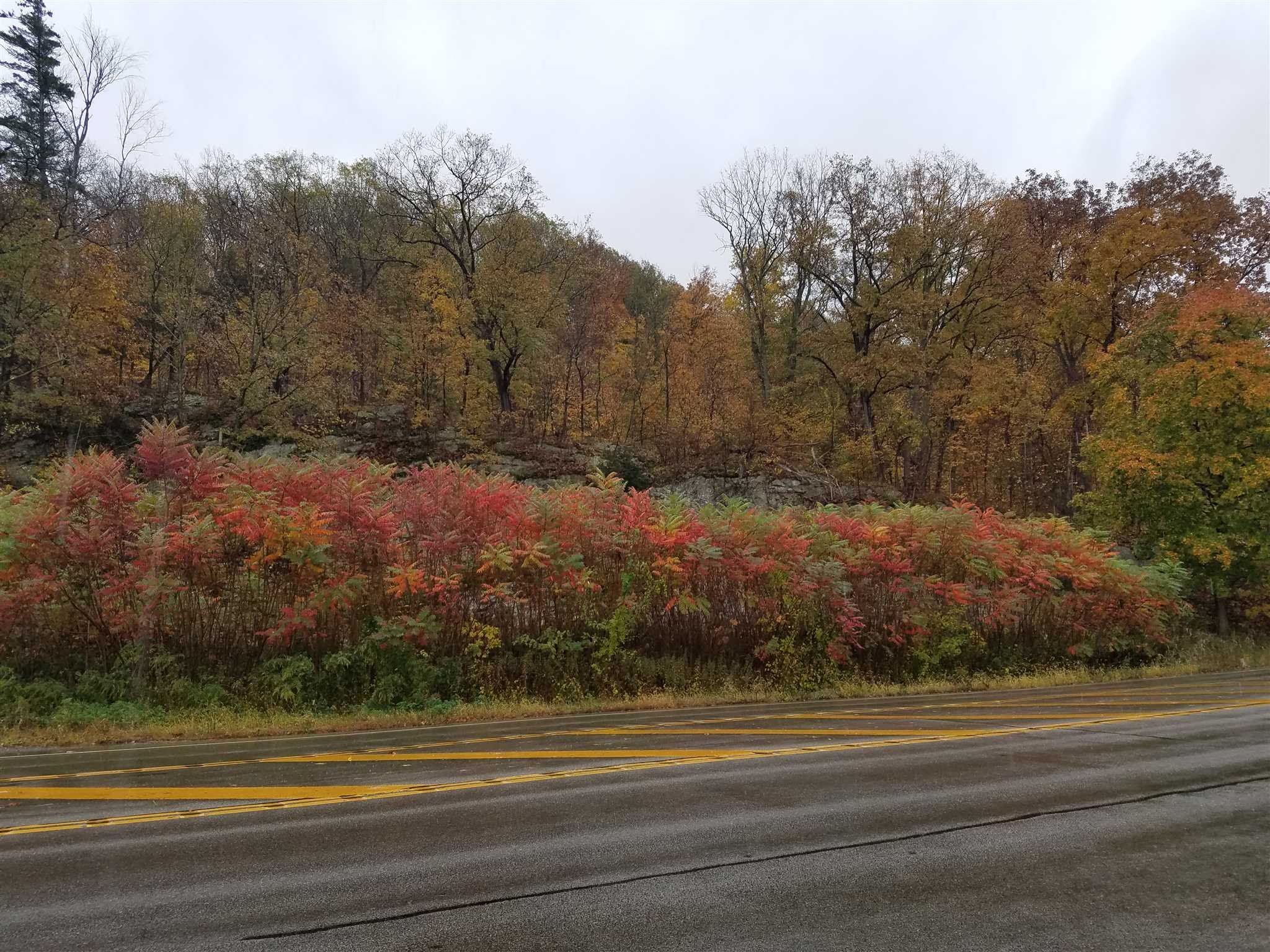 Land for Sale at ROUTE 9 ROUTE 9 Fishkill, New York 12524 United States